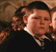 Jamie Waylett as Crabbe (COS)