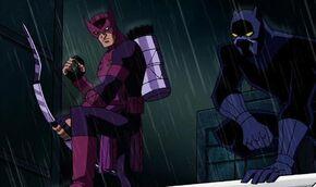 Hawkeye Panther