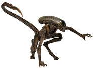 NECA Dog Alien