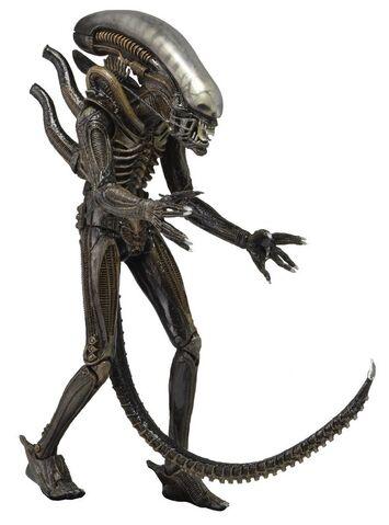 File:NECA Aliens Series-2 02.jpg