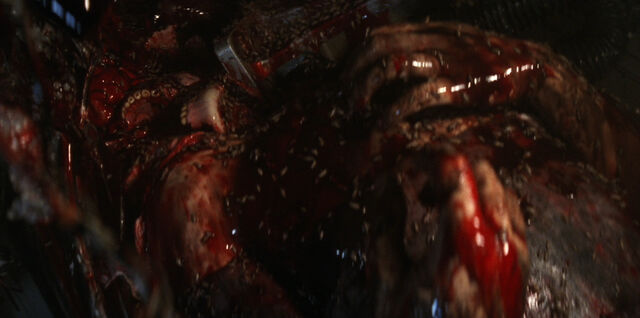 File:Turk's corpse.jpg
