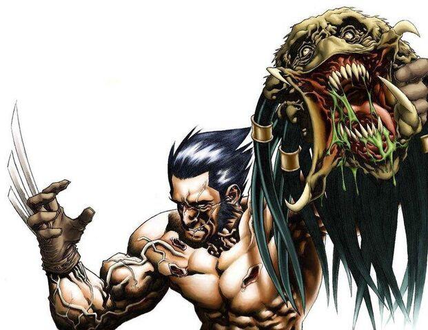 File:Wolverine vs Predator.jpg