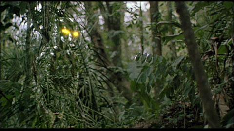 File:Predator-cloak-image-01 1203469753.jpg