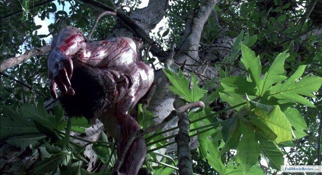 File:Predator (1987)-image-491808.jpg