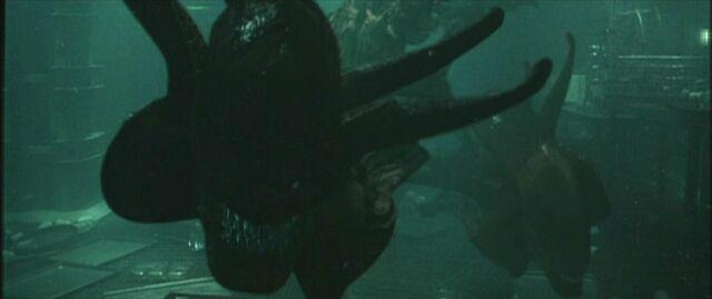 File:AlienResurrectionXenomorphSwimming.jpg
