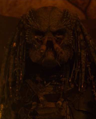 File:Greyback.png