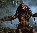 Jungle Hunter (Predator)
