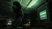 Drone alien isolation