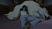 Korra and Naga sedated