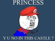 Y U NO Mario