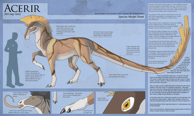 File:Acerir-SpeciesSheet.jpg