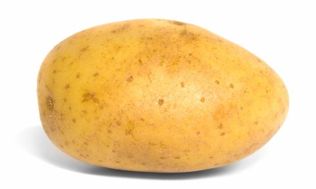 File:Live saving potato.jpeg