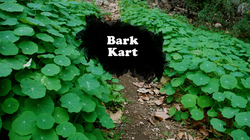 Bark Kart