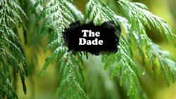 The Dade