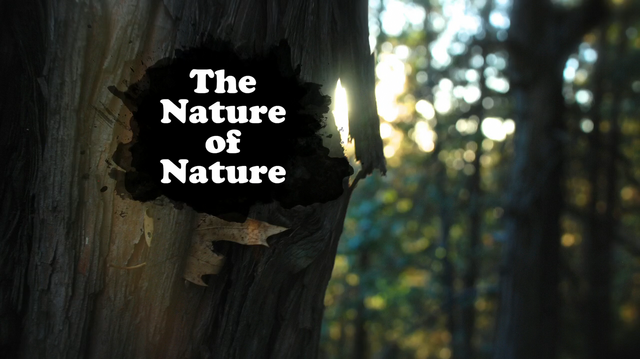 File:The Nature of Nature.png