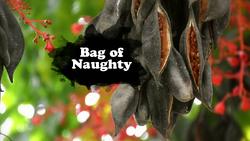 Bag of Naughty