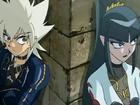 Sellon and Anubias
