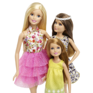 Great Puppy Adventure Sisters Willowfest Doll Gift Set 3