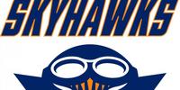 Tennessee-Martin Skyhawks