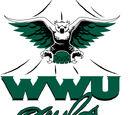 William Woods Owls