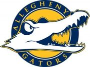 Algheny-gators-announce-online-store