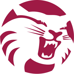 File:Chico State Wildcats.jpg