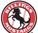 Billings Mustangs
