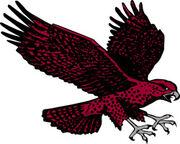 UMES Hawks