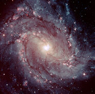 U'lara Galaxy