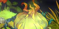 Stinkweed