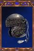 Shagreen Helmet
