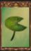 Lotus Leaf (Origins)