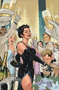 Catwoman Vol 4-29 Cover-1 Teaser