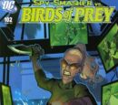 Birds of Prey Issue 102