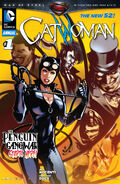 Catwoman Vol 4 Annual 1 Cover-1