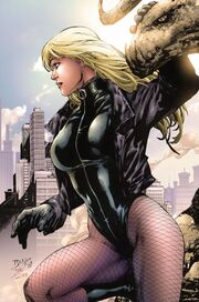 784599-774258 black canary by dinei super