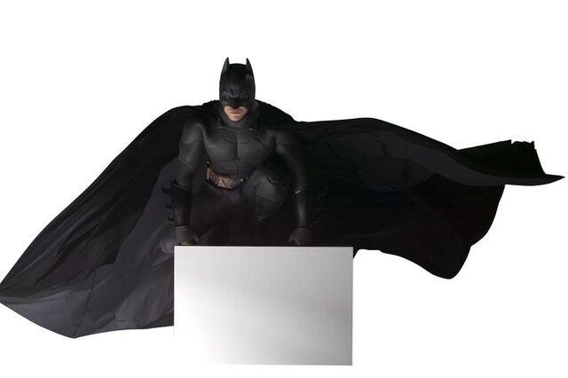 File:BatsBegins6.jpg