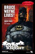 Batman The Dark Knight Teaser Cover