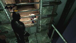 Harley caged.jpg