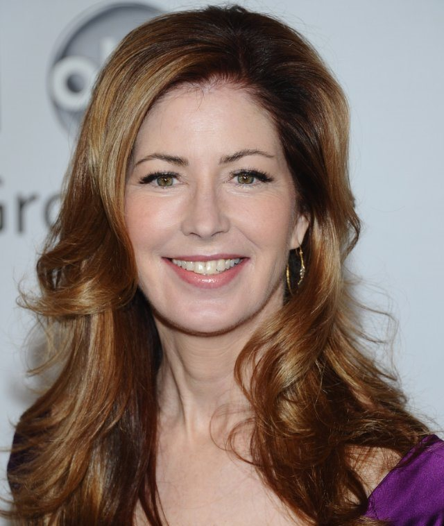 Dana Delany Batman The Animated Series Wiki Fandom
