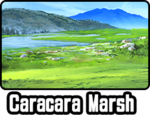 Caracara Marsh