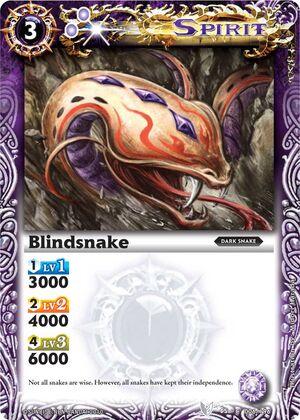Blindsnake2
