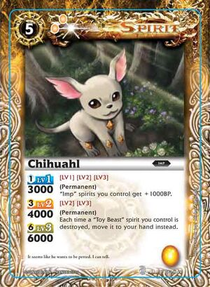 Chihuahl2
