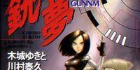 Gunnm (novel)