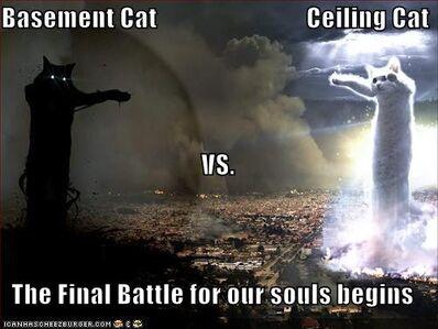 Ceiling cat vs basement cat by demonspawn12-d3gq1fq