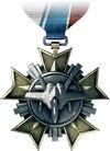 Jet Service Medal.jpg