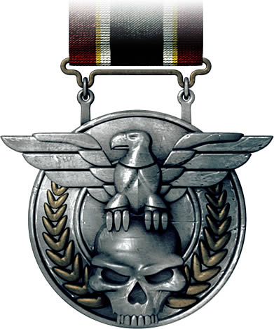 File:Combat Efficency Medal.jpg