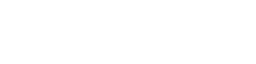Salmson 2 Icon