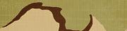 BF4 Tricolor Desert Camo