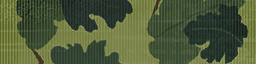 File:BF4 Vine Leaf Camo.png